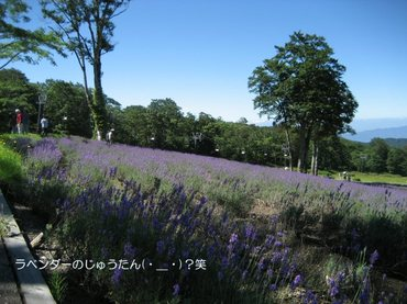 07_08_16_02_700