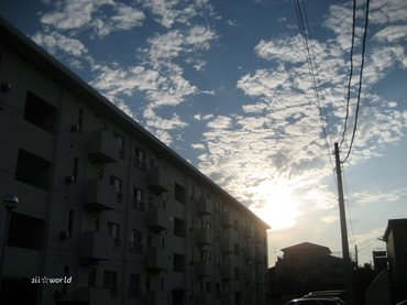 08_09_27_03_700
