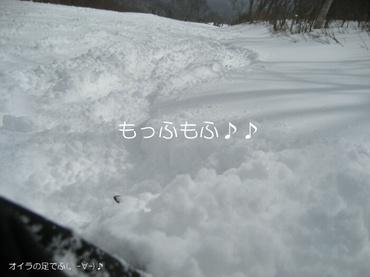 09_04_03_04_700