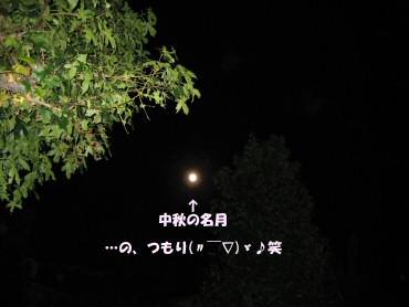 06_10_07