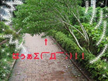 07_09_08_01