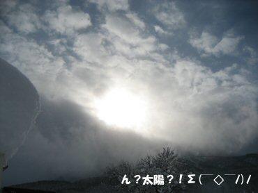 08_01_06_11