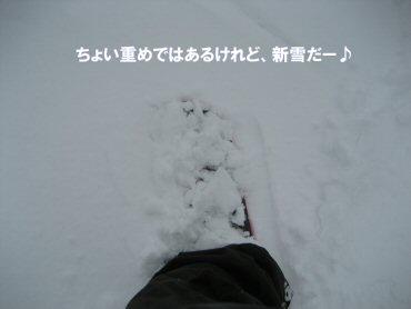 08_03_12_15