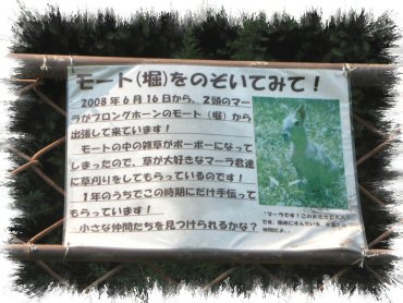 08_09_17_03