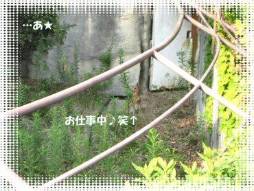 08_09_17_04
