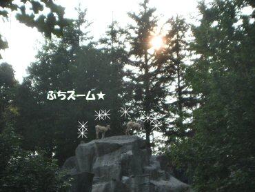 08_09_17_06