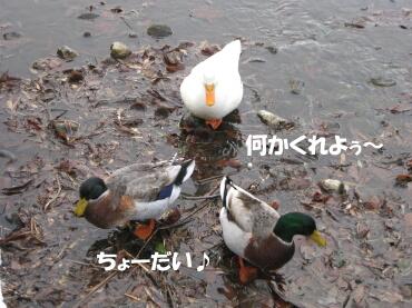 09_01_10_15
