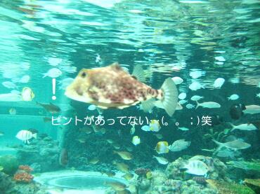 09_05_11_11