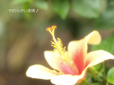 09_08_22_03