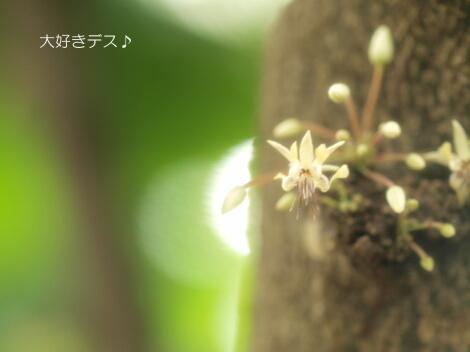 09_08_22_09