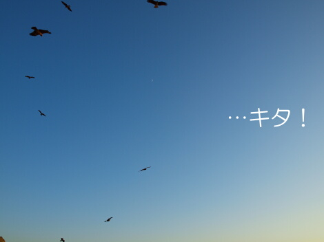 09_11_25_07