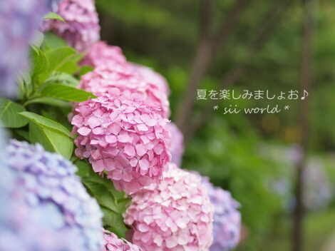10_07_24_02