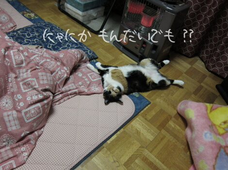 11_01_29_03