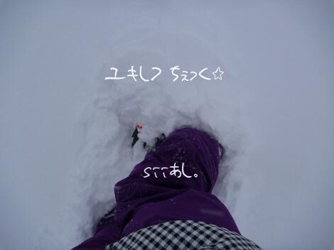 12_01_04_05_1