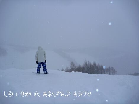 12_03_03_10