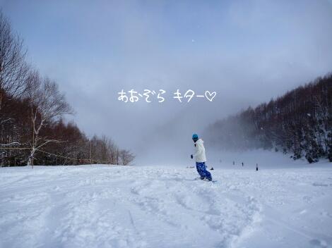 12_03_03_15