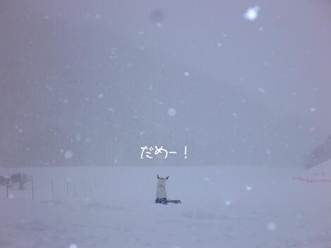 12_03_18_09