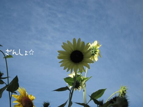 12_11_19_07