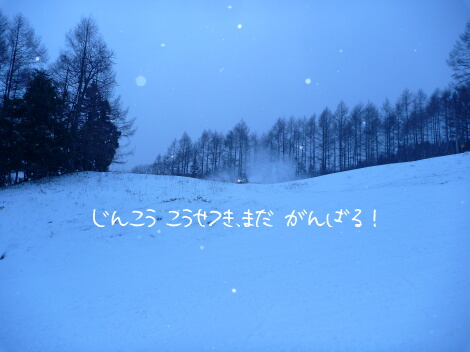 13_12_16_14