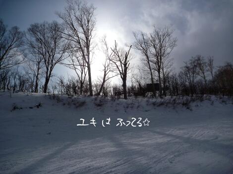 13_12_31_6