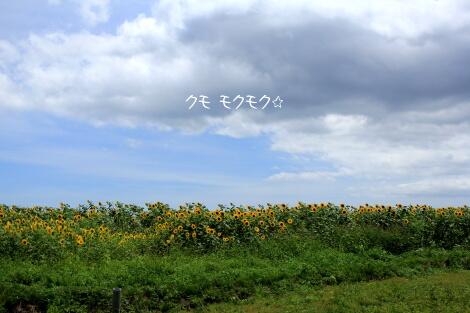 14_08_15_02