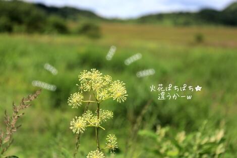 15_08_19_12
