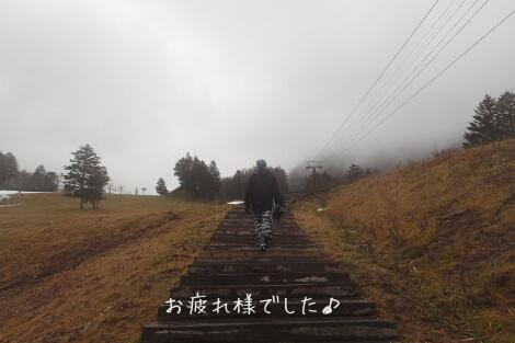 15_12_13_14