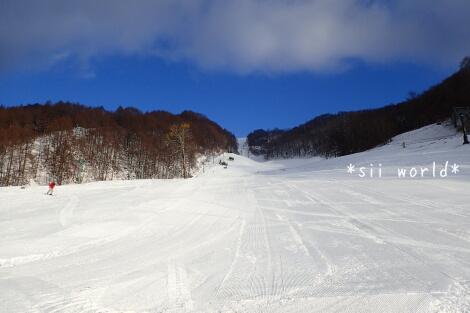 15_12_31_01