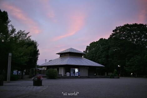 17_09_24_20