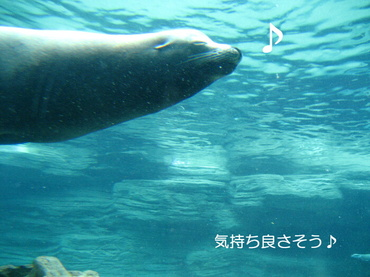 09_05_11_07_700