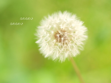09_06_26_05_600