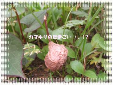 07_05_05_01