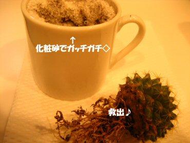 08_09_20_04