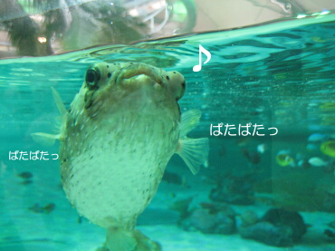09_05_11_09
