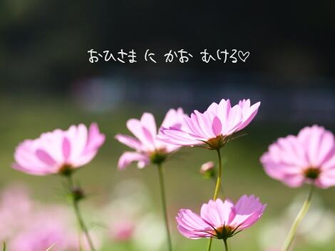 11_12_19_04