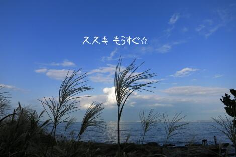 13_10_14_10