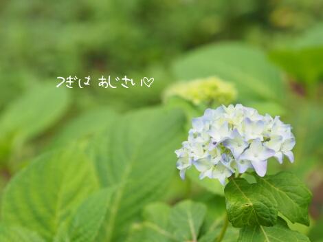 13_05_25_07