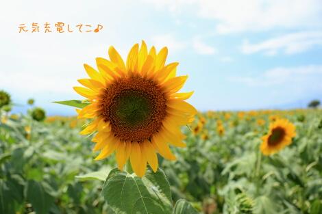 15_08_09_2_09