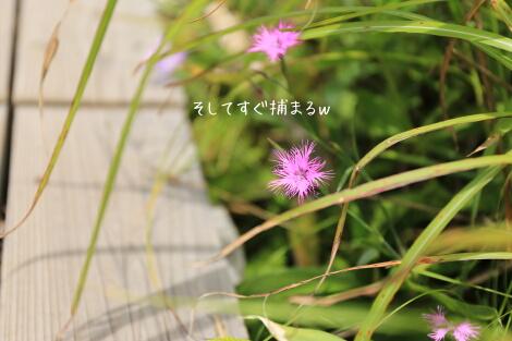 15_08_19_20