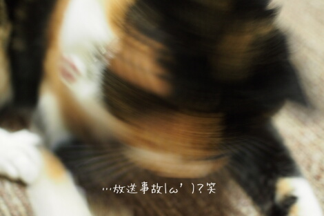 16_01_03_08